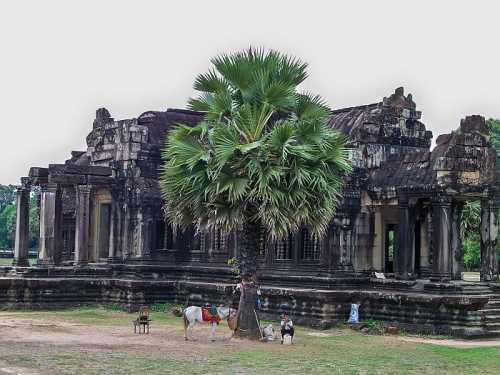 ангкор ват, камбоджа: детально о храмовом комплексе с фото