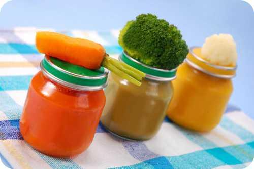 чем кормить йоркширского терьера в домашних условиях: что едят, питание щенков и взрослых особей